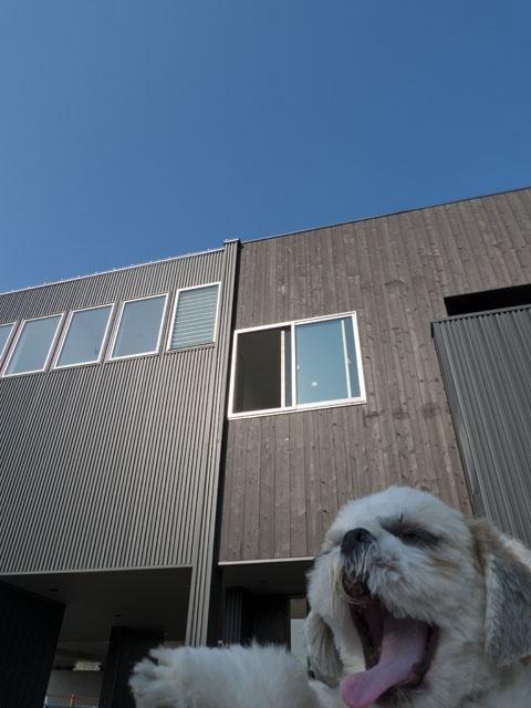オープンハウス:「屋上ビアガーデンを楽しむ家」を開催中
