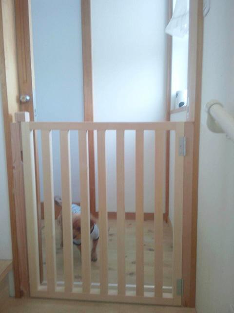 寝室のドアとは別に犬の柵を取り付け